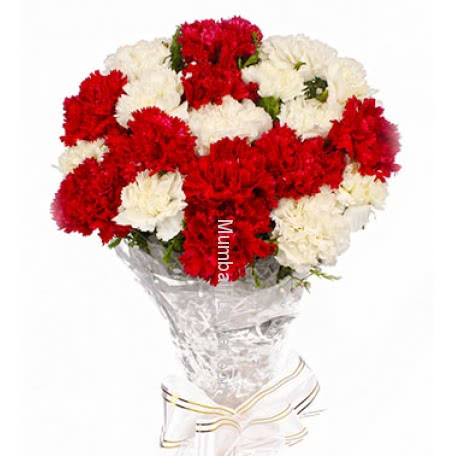 White n Red Carnations