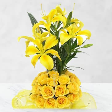 Impress the recipient Arrangement of 5 Yellow Lilies and 30 Yellow Roses nicely decorated with Ribbons.