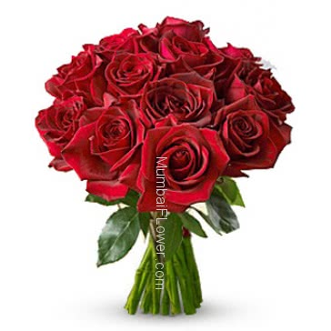 Lovely Bunch of 15 Valentines Day Red Roses for your Valentine