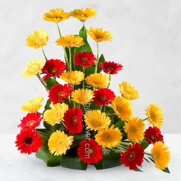Gift is a feeling of heart. give beautiful Arrangement of 40 Red and Yellow Gerberas