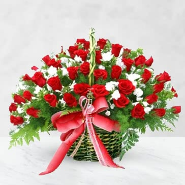 The Red roses is a flower of love. and the white roses are the sincerity of love with Basket of 50 Red and White Roses nicely decorated with Greens.