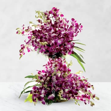 Tall Arrangement with 75 Purple Orchids nicely decorated with fillers and grens