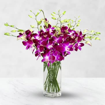 Vase with Bunch of 10 Purple orchids nicely decorated with greens