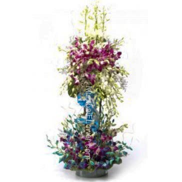 Tall Arrangement of 75 purple, White and blue orchids nicely decorated with greens