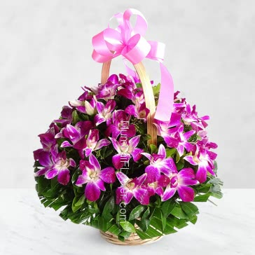 Basket of 6 Purple Orchids nicely decorated with greens.. Please note: This Item not available all the time.