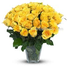 Send some of these golden beauties to a sick friend and watch the recipient perk right up! They are also perfect for new mothers, someone newly engaged or as a colorful thank you. Some gorgeous yellow roses to consider sending are the lightly fragrant and deep yellow Gold Strike, For very special friends.Glass Vase with 60 stems of  Yellow Roses.