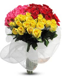 A Beautiful gift for any occasion  combination of red and yellow pink ... roses conveys gaiety and happiness and symbolizes unity. Bunch of 60 Stems of Mixed Roses Best way to Send your feelings.