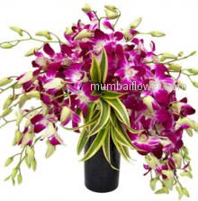 The orchid is a flower of magnificence that brings a universal message of love, beauty, wisdom, thoughtfulness, luxury, strength, refinement, and affection.A purple orchid symbolizes royalty, admiration, and respect. You can gift one to someone you look up to.Glass Vase with 20 Purple Orchids.
