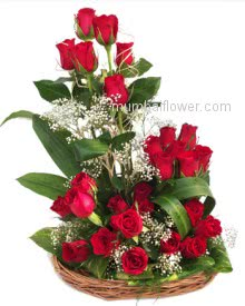 Send red and beautiful roses to your dearest one. Arrangement of 30 Red Roses nicely decorated with Greens