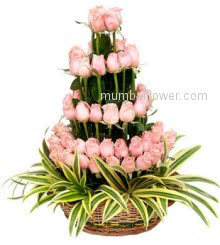 Arrangement of 75 Stems of Pink Roses nicely decorated with Greens.