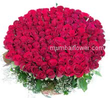 Huge Bunch of 200 stems of Red Roses nicely decorated with Ribbons is the best for to express your feelings no needs of words!