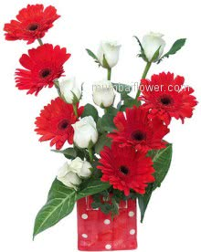 Beautiful combination for beautiful moments Simple clear Glass Vase with red Gerberas and White roses.