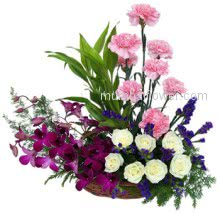 Perfect arrangement of beautiful combination Arrangement of 6 Purple Orchids and 10 pink Carnations and 10 white Roses as your beautiful love.