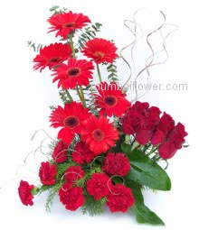 Arrangement of 10 Carnations and 10 Gerberas and 10 Red Roses for your love.