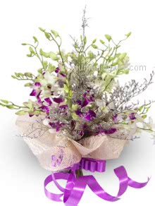 A most romantic and beautifully decorated specially for your loved one Bunch of 20 White and Purple Orchids Wrapped with net and a Ribbon bow.