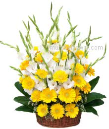 Arrangement of 10 White Glaioli and 30 Yellow Gerberas a smart combination are perfect for warm welcome someone