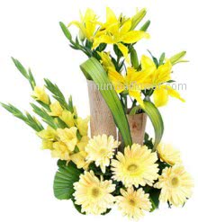 Arrangement of 5 Yellow Lilies and 6 Yellow Gerberas and 10 Yellow Gladioli the sunny arrangement very fresh and very much energetic.