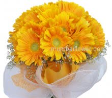 Bunch of 20 Stems of sunny yellow Gerberas are best for friendship or wish best luck or to send a friend get well soon
