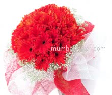 When you want to cheer someone with love Bunch of 30 stems of Gerberas works the best!