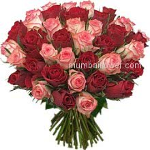 Bunch of 40 Red and Pink Roses for your Beautiful feminine love
