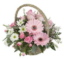 For impress your be loved with this Mixed Flowers Basket nicely decorated with Greens.
