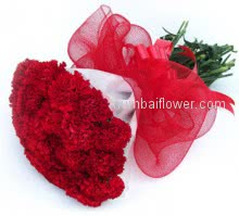 Bunch of 40 Red Carnations to represent love, passion, adoration and affection..