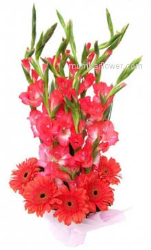 A most beautiful Arrangement of 10 Red Gladioli and 10 Red Gerberas will make the environment so romantic will help you to say the message of your heart to your loved one