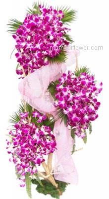 The delicate, exotic and graceful orchid represents love, luxury, beauty beautifully tall Arrangement with 75 Purple Orchids are the best way to show your special one that how special they are! . Please note: Photo is idea only , actual shipment may vary