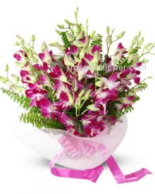 Specially for your loved one Bunch of 10 Purple Orchids nicely decorated with ribbons by top Florist.