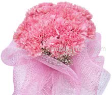 Pink carnations carry the greatest significance, beginning with the belief that they first appeared on earth from the Virgin Marys tears  making them the symbol of a mothers undying love. For your mom Bunch of 20 stems of Carnations