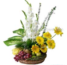 An arrangement of white gladioli and yellow gerberas with mixed fruits arranged beautifully.