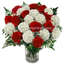 Hi Quality 30 Red and White Carnations in a Vase beautifully arranged.
