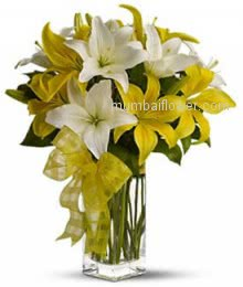10 White and Yellow Lilies in a Simple Glass Vase for your Love, a beautiful combination of colors.