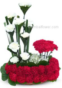 Beautiful combination of Arrangement of 30 Red Carnation and 10 White Carnation to express your innocent love feeling.  Please Note: We may substitute colors or flowers as per availability.
