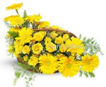 It is spring again. The earth is like a child that knows poems by heart. This beautiful session give flowers with sweet Arrangement of 10 Yellow Gerberas and 20 Yellow Roses
