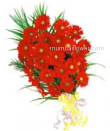 Bunch of 20 Red Gerberas for your love make moments romantic!