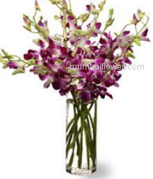 Send this 10 Purple Orchids in a Vase to your loved ones to impress him/her.