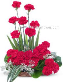 Beautifully arranged 30 Red Carnation  naturally enough to win anybodys heart..