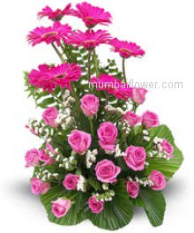 Arrangement of 20 pink Roses and 10 Pink Gerberas beautifully arranged with special leaves naturally.
