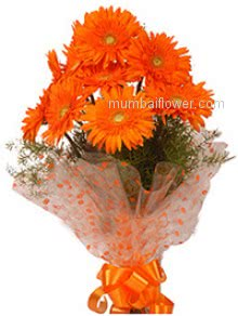 Send color of friendship and community with Bunch of 12 Orange Gerberas  nicely decorated with Ribbons.