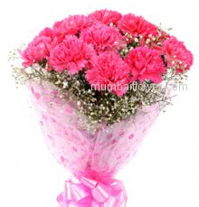 Bunch of 12 Pink Color Carnations nicely decorated with filler and ribbons.