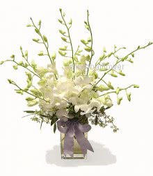 Glass Vase with 10 White Orchids nicely decorated with fillers and greens.  Please note: this item is not available all the time.