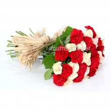 Bunch of 15 Red Carnation and 15 White Roses nicely decorated with fillers and ribbons
