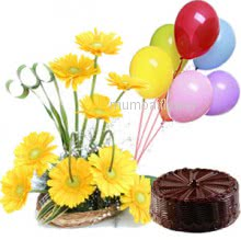 Arrangement of 15 Yellow Gerberas and Half kg. Chocolate Truffle Cake..with baloons