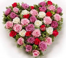 Heart Shape Arrangement of 60 Red, Pink, and White roses nicely decorated with fillers and greens