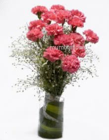 Glass vase with 15 Pink carnation nicely decorated with greens