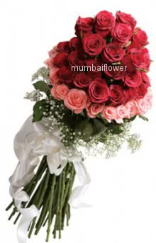 Bunch of 50 Pink and red roses nicely decorated with fillers and ribbons