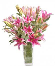 Bunch of 5 Stems of  Pink Oriental lilies nicely decorated with fillers and greens.. please note: Glass Vase is not included