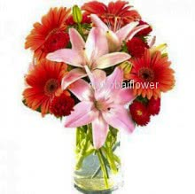 Glass vase with 10 red gerbras and 3 Pink lilies nicely decorated with greens