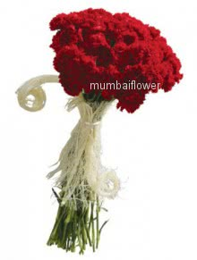 Bunch of 20 red carnation nicely decorated with fillers and ribbons
